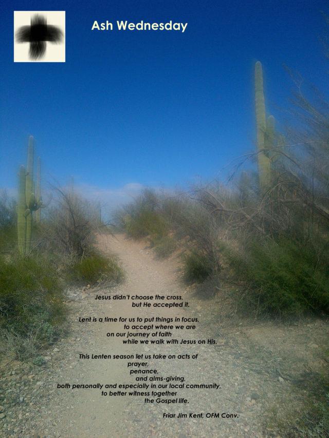 Tucson-20140127-00079